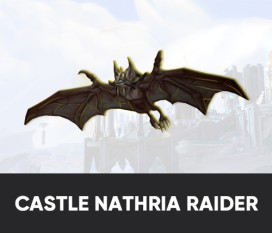 Glory of the Castle Nathria Raider Boost Carry